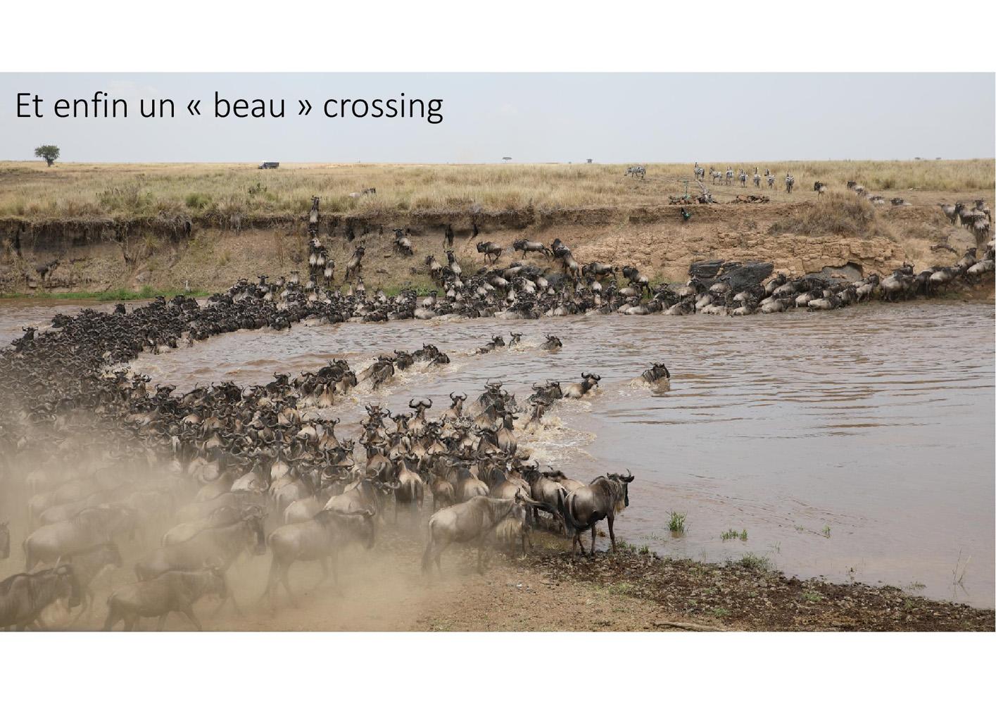 2017-safari_kenya-03