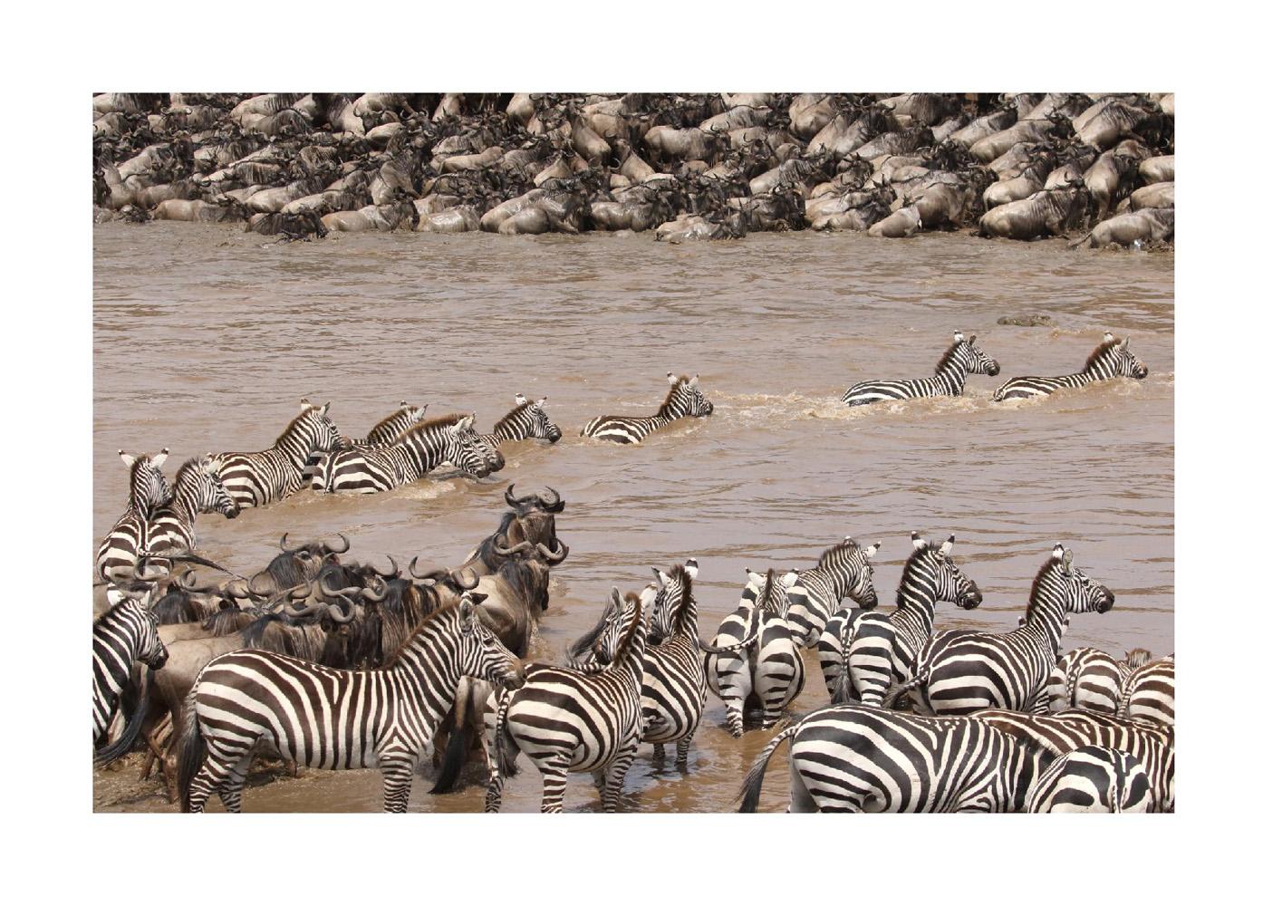 2017-safari_kenya-04