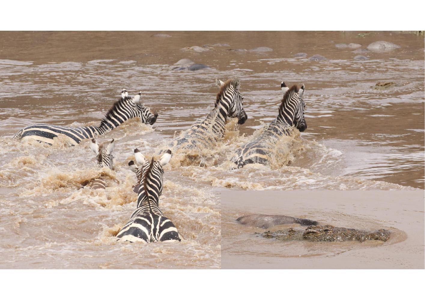 2017-safari_kenya-09
