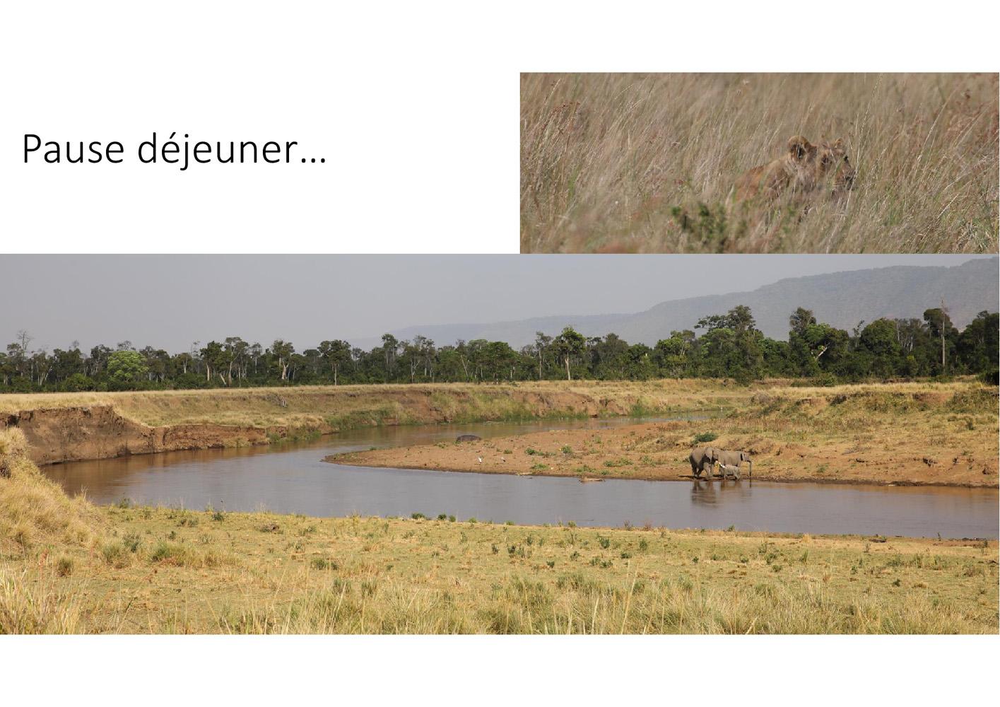 2017-safari_kenya-96